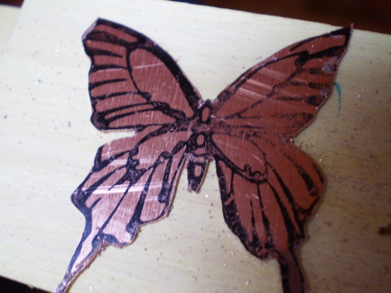 Copper Butterfly II 091