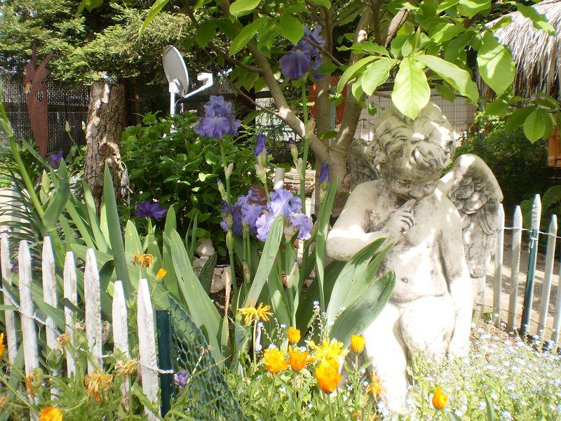 Earth Day Garden 005